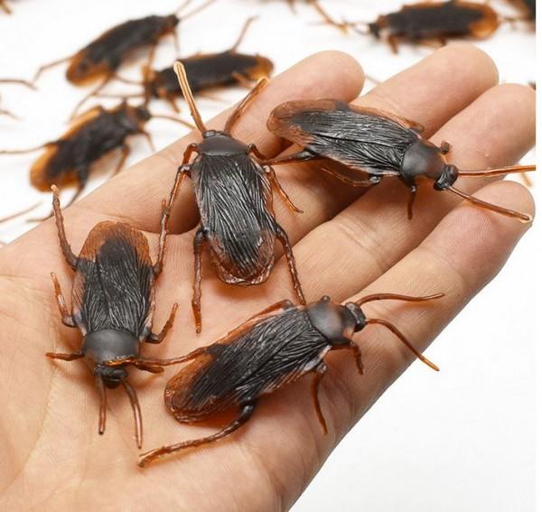 5 x Kakerlake- Deko für Dosen